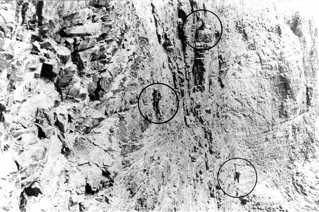 Путь от перьев по стене Зародыша